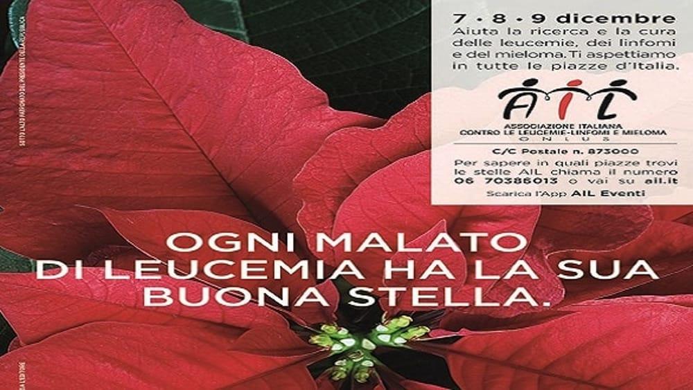 Stella Di Natale Ail 2021.Un Aiuto Lungo 30 Anni Tornano In 4 800 Piazze Italiane Le Stelle Di Natale Dell Ail