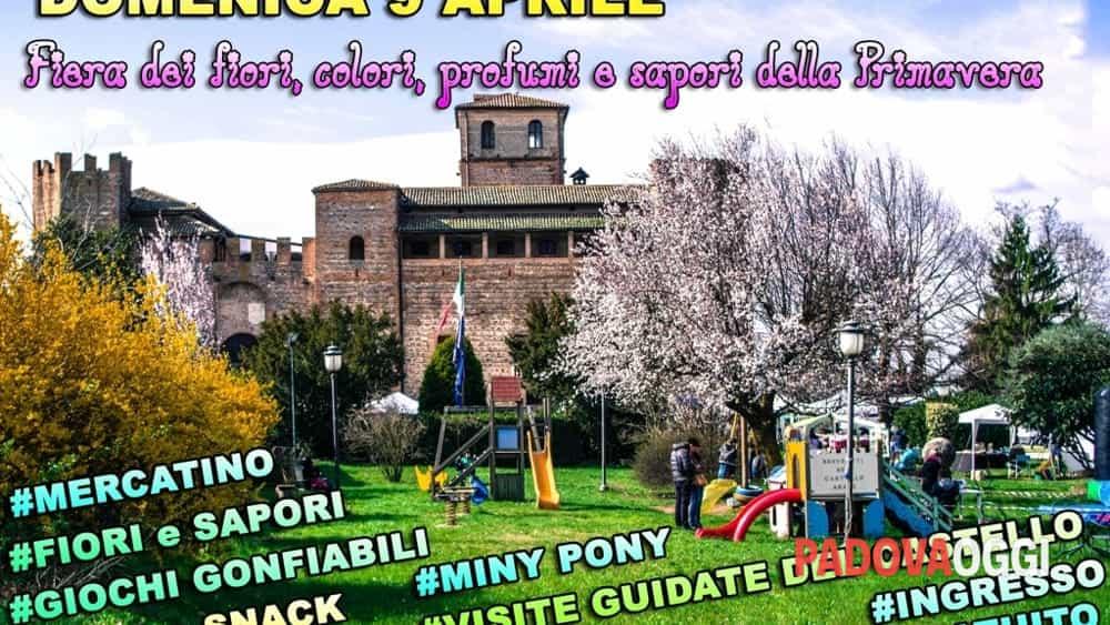 Fiera di primavera al castello di valbona il 9 aprile 2017 for Fiera piazzola sul brenta 2017