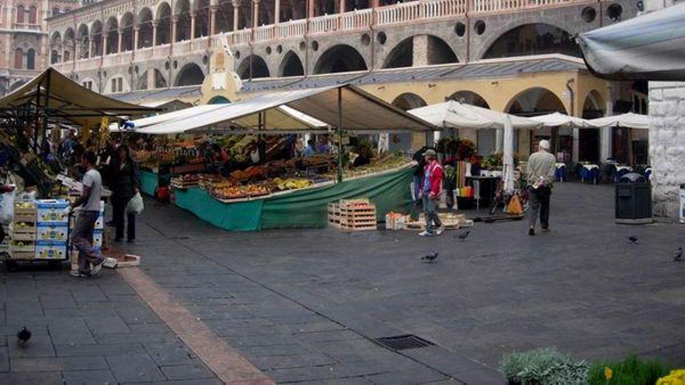 Mercato in piazza delle erbe a padova lavoratori in nero for Mercato antiquariato padova